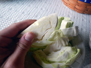Eating raw cabbage