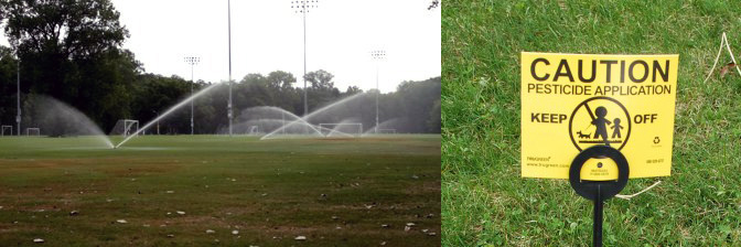 soccer_field_being_watered